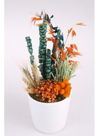 Kibrithane Çiçek Yapay Çiçek  Seramik Saksı Kuru Çiçek  Aranjman Kc00200773 Renkli